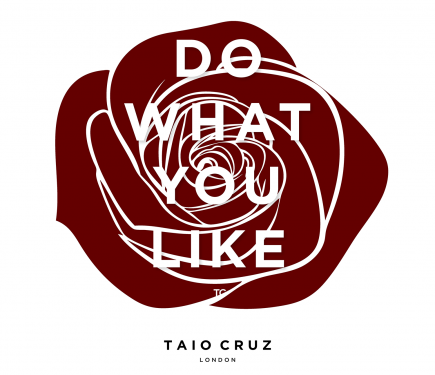 Taio-Cruz-Do-What-You-Like